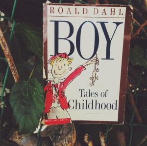 Boy, (Tales of Childhood)