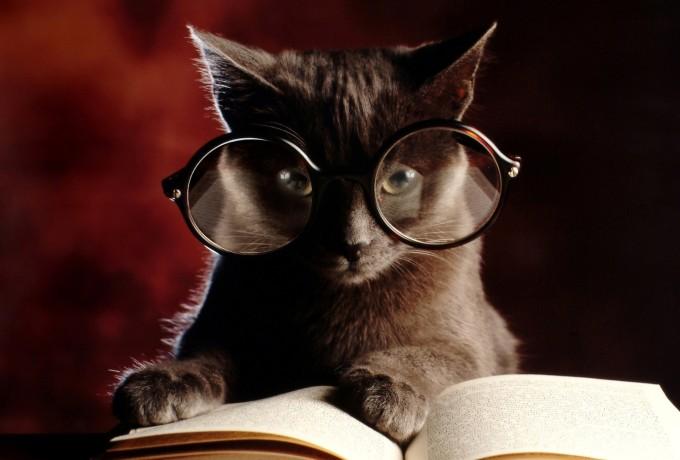 reading-book-wallpaper-high-resolution