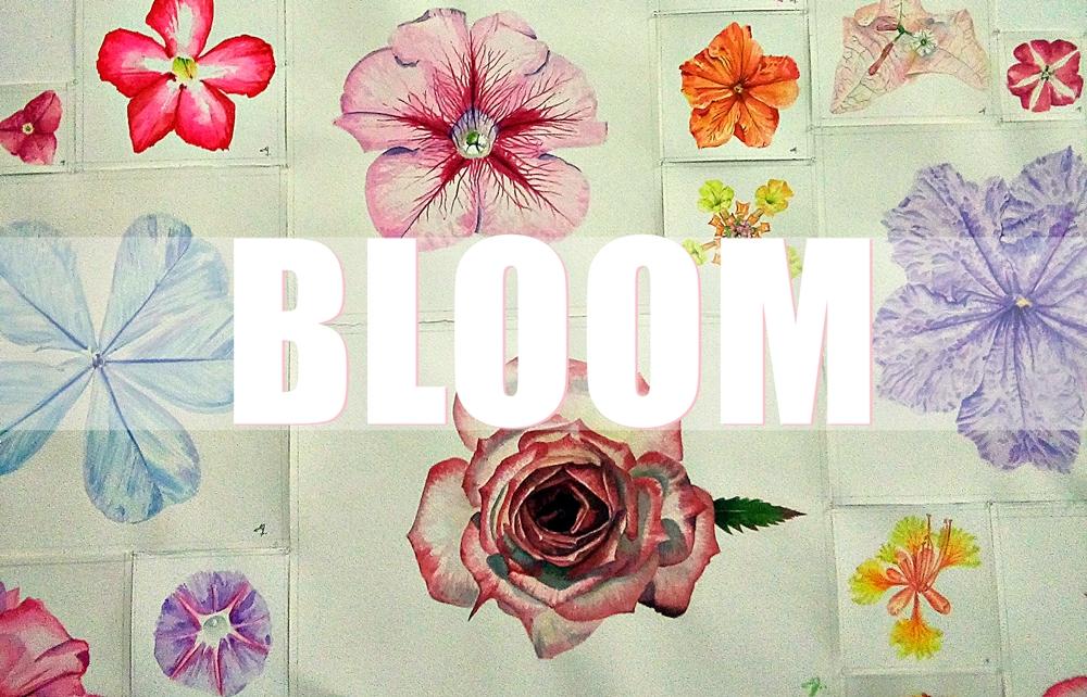 Entre florecimiento caótico y la simetría |Carta a la exposiciónBLOOM