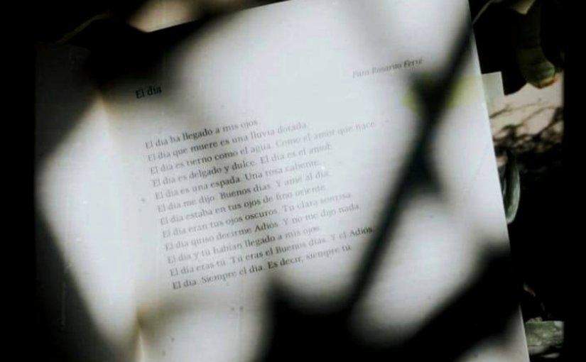 """#15 """"El día"""" de EfraínHuerta"""